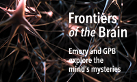Frontiers of the Brain